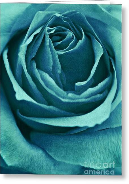 Rose Mixed Media Greeting Cards - Romance II Greeting Card by Angela Doelling AD DESIGN Photo and PhotoArt