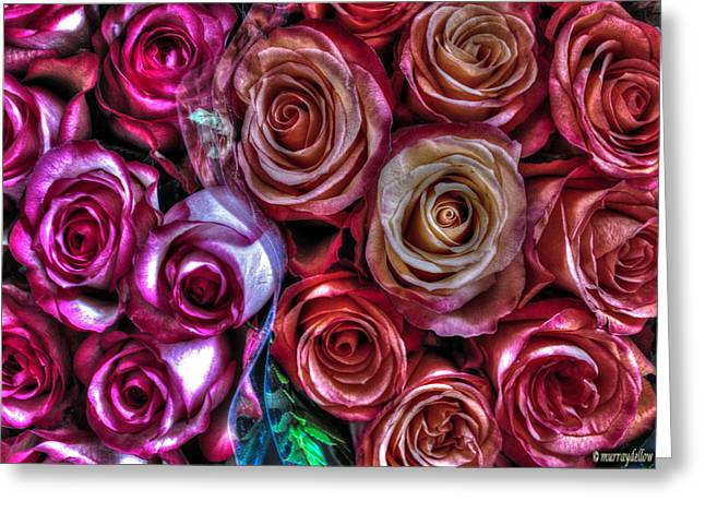 Subtle Colors Greeting Cards - Romance Roses Greeting Card by Murray Dellow