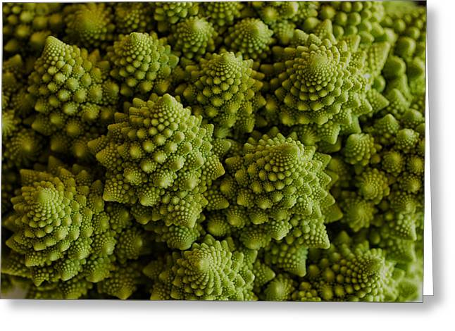 Broccoli Greeting Cards - Romanesco Broccoli Close Up Greeting Card by Marianne Donahoe
