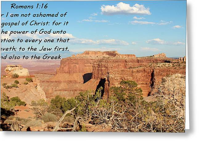 Bible Greeting Cards - Romans 1-16  Canyonlands N P Greeting Card by Nelson Skinner