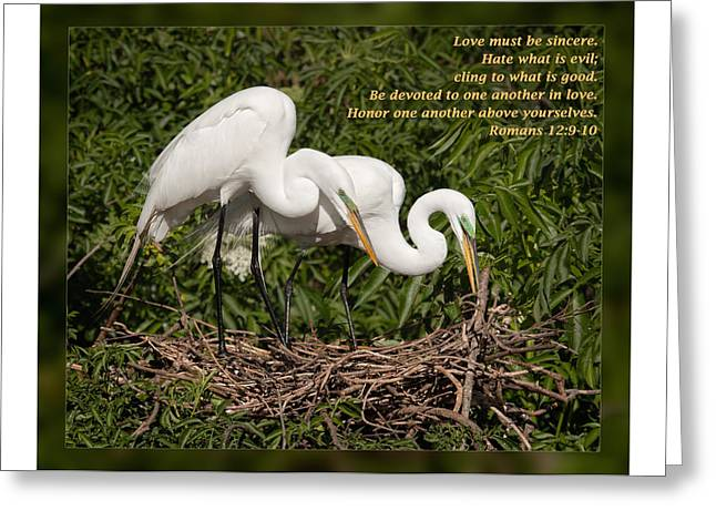 Inspirational Wildlife Prints Greeting Cards - Romans 12 9-10 Greeting Card by Dawn Currie