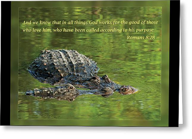 Pairs Greeting Cards - Romans 8 28 Greeting Card by Dawn Currie