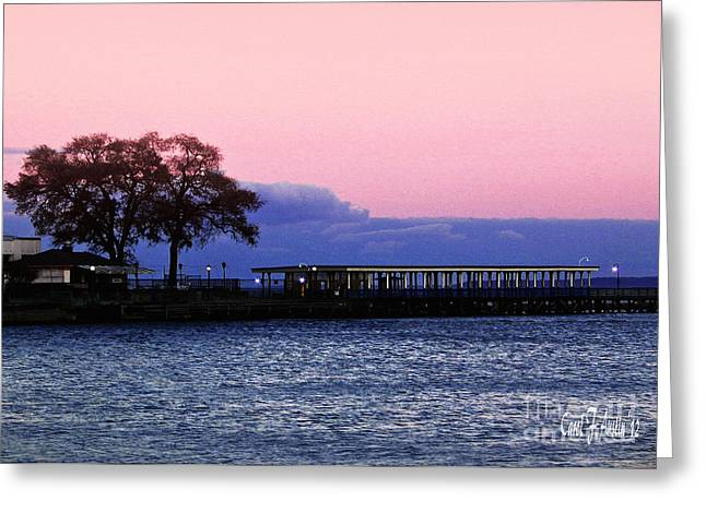 Sunset Greeting Cards Greeting Cards - Romantic Seascape  Greeting Card by Carol F Austin