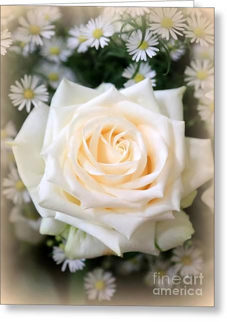 Romantic White Rose Greeting Card by Carol Groenen