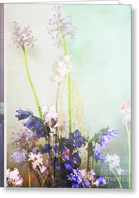 Texture Floral Mixed Media Greeting Cards - Romantic Wild Flowers on Abstract Greeting Card by AdSpice Studios
