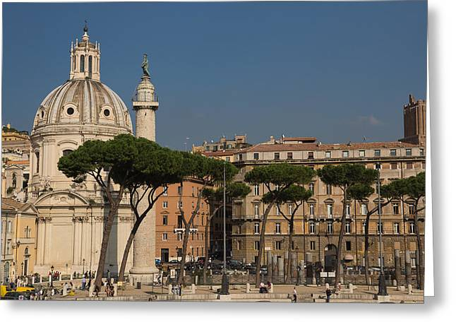 Umbrella Pine Greeting Cards - Rome - Umbrella Pines and Sunshine  Greeting Card by Georgia Mizuleva