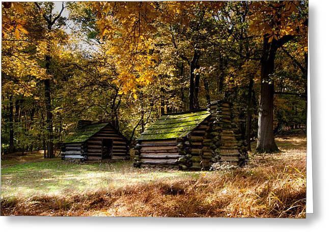 Log Cabins Greeting Cards - Roof Moss Greeting Card by Scott Hafer