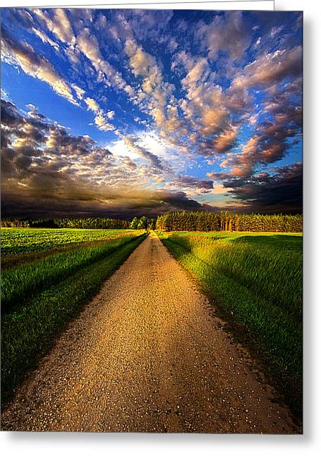 Dirt Road Greeting Cards - Room to Roam Greeting Card by Phil Koch