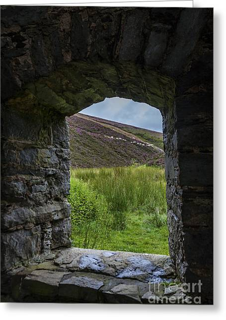 Outlook Greeting Cards - Room with a View Greeting Card by Diane Macdonald