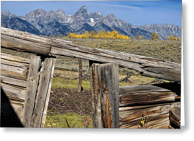 Log Cabin Digital Greeting Cards - Room with a View Greeting Card by Kathleen Bishop