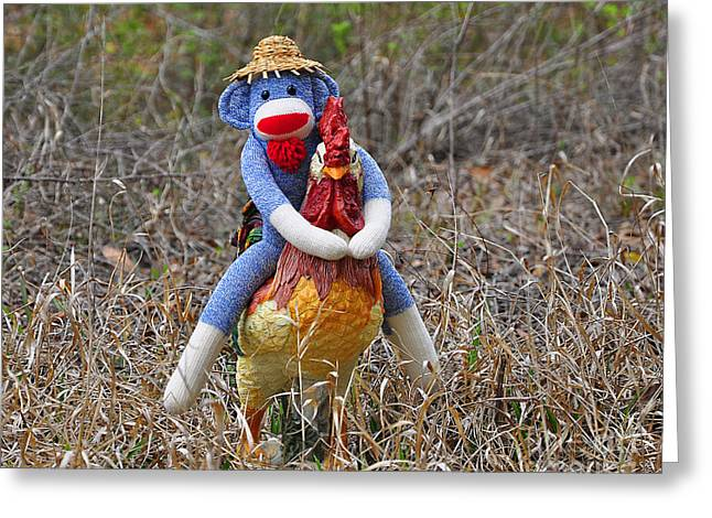 Rooster Rider Greeting Card by Al Powell Photography USA