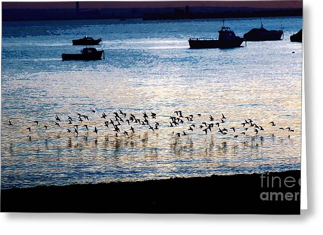 Sea Birds Sculptures Greeting Cards - Roosting time on the Thames Estuary Greeting Card by Lone Cloud
