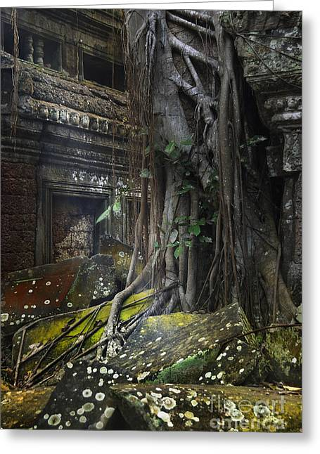 Temple Of Ta Prohm Greeting Cards - Roots over Stones Greeting Card by Istvan  Kadar