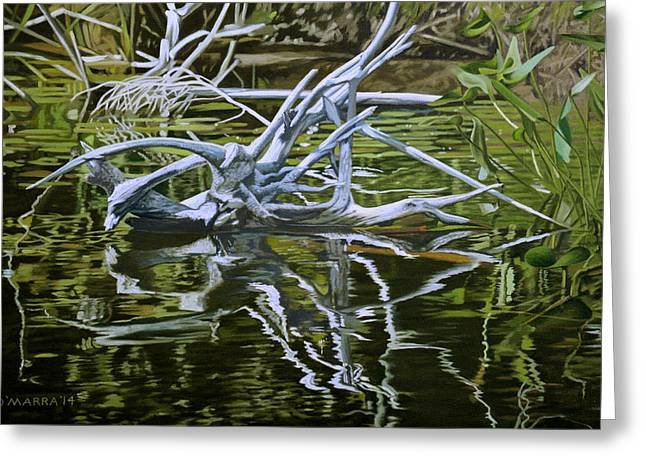 Tree Roots Paintings Greeting Cards - Roots Reflections Greeting Card by Allan OMarra