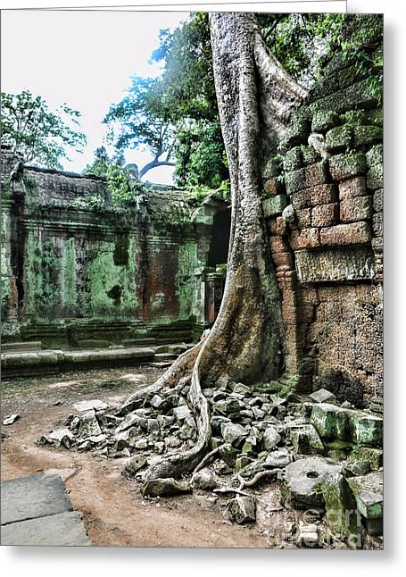 Tree Roots Photographs Greeting Cards - Roots Ta Prohm IV Greeting Card by Chuck Kuhn