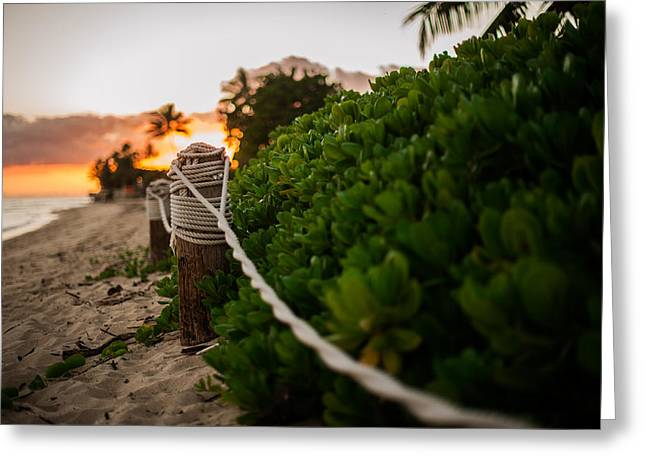 Paradise Greeting Cards - Rope Fence Greeting Card by Jason Bartimus
