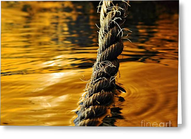 Miscellaneous Greeting Cards - Rope on Liquid Gold Greeting Card by Kaye Menner