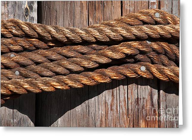Rope Greeting Cards - Roped Greeting Card by Dan Holm