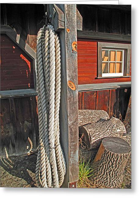 Ropes And Woods Greeting Card by Barbara McDevitt