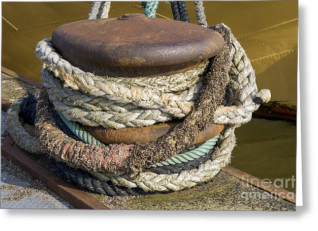 Steel Pier Greeting Cards - Ropes Greeting Card by Patricia Hofmeester