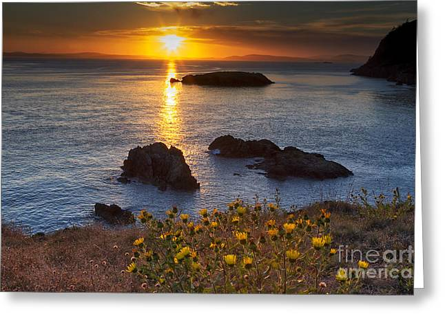 Headlands Greeting Cards - Rosario Head Sunset Greeting Card by Mark Kiver