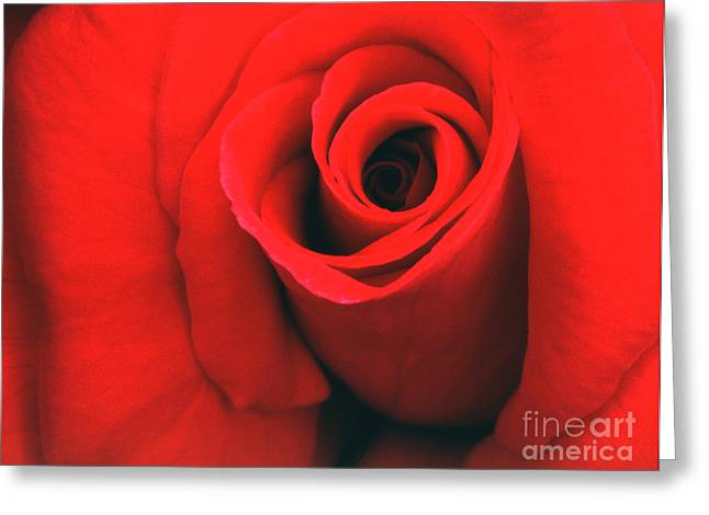 Transparency Geometric Greeting Cards - Rose 1 Greeting Card by Rich Killion