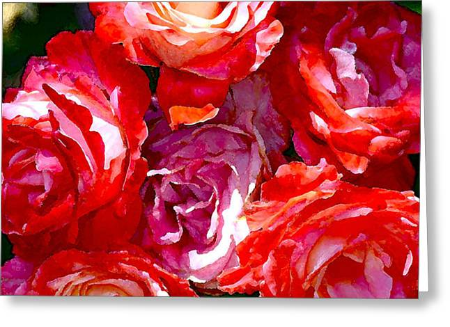 Rose 124 Greeting Card by Pamela Cooper