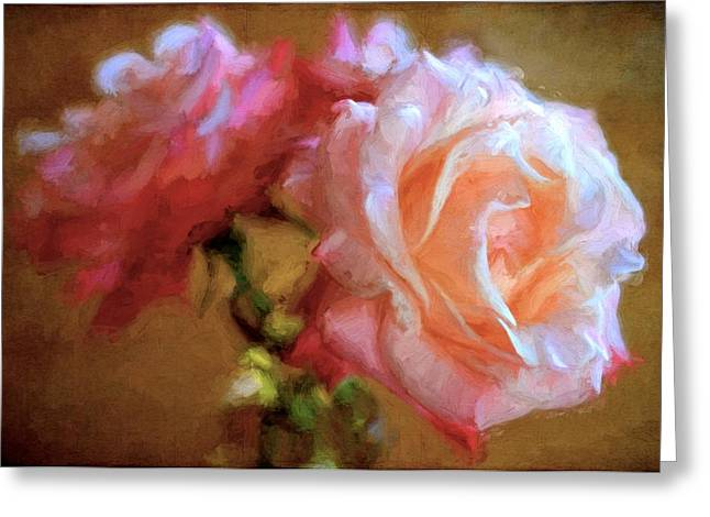 Pamela Cooper Greeting Cards - Rose 166 Greeting Card by Pamela Cooper
