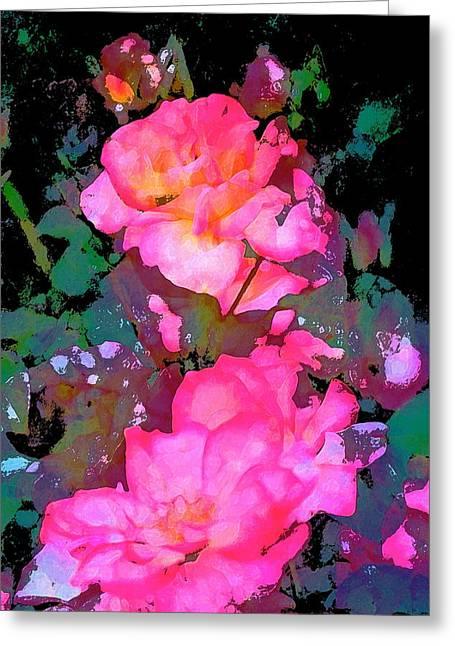 Pamela Cooper Greeting Cards - Rose 193 Greeting Card by Pamela Cooper