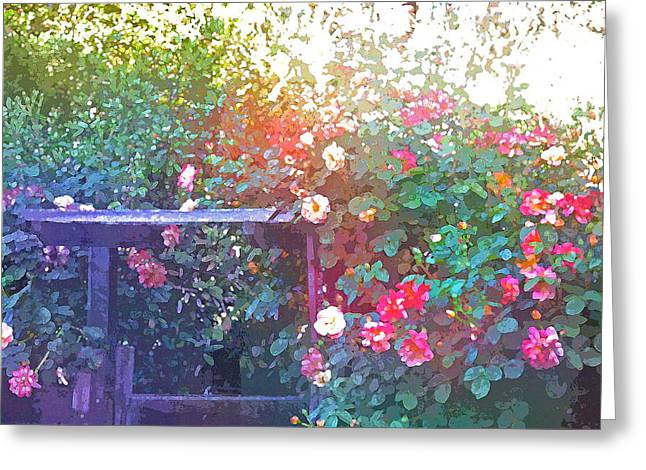 Rose 205 Greeting Card by Pamela Cooper