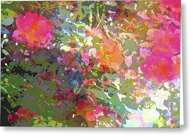 Rose 207 Greeting Card by Pamela Cooper
