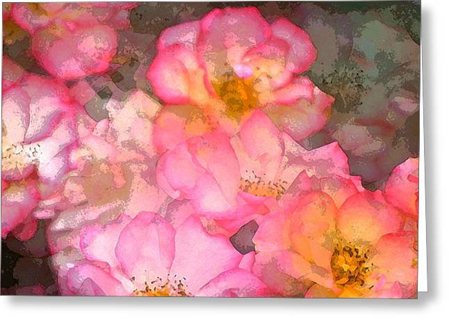 Rose 210 Greeting Card by Pamela Cooper