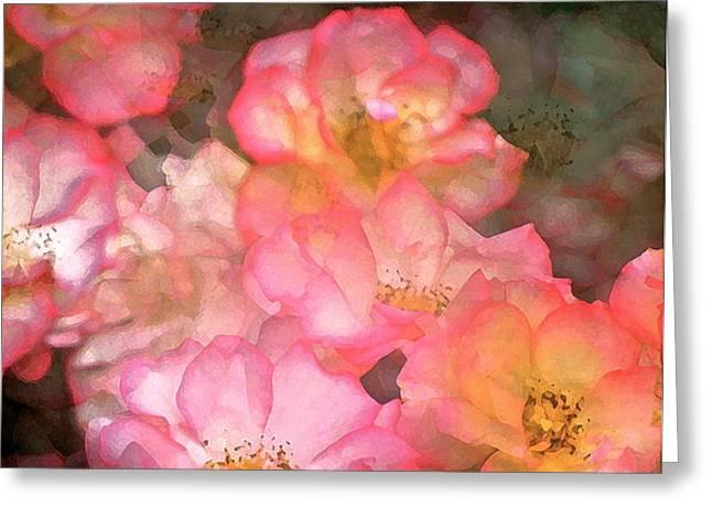 Rose 212 Greeting Card by Pamela Cooper
