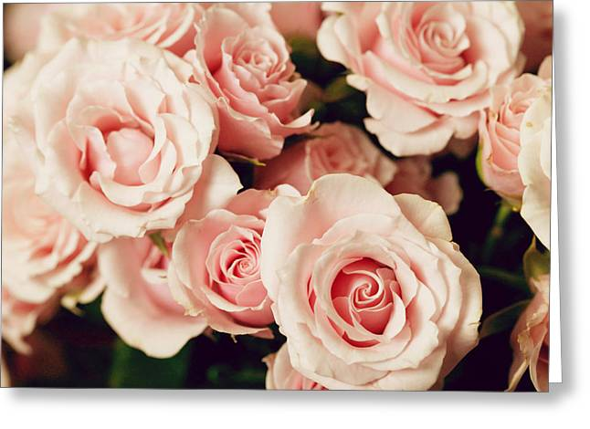 Flower Still Life Prints Greeting Cards - Rose Bouquet - pink nature flower photography Greeting Card by Amelia Matarazzo