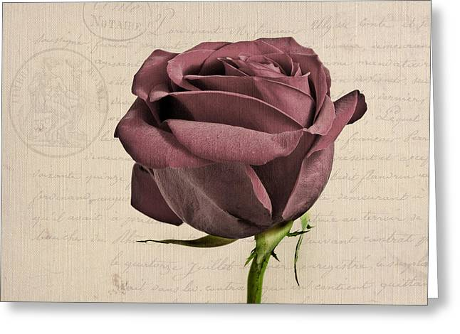 Vintage Rose Greeting Cards - Rose en Variation - s02c3t3a Greeting Card by Variance Collections