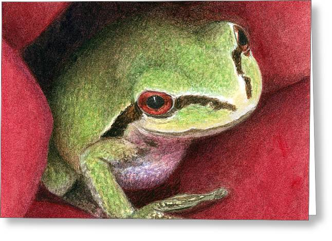 Tree Frog Greeting Cards - Rose Frog Greeting Card by Pat Erickson