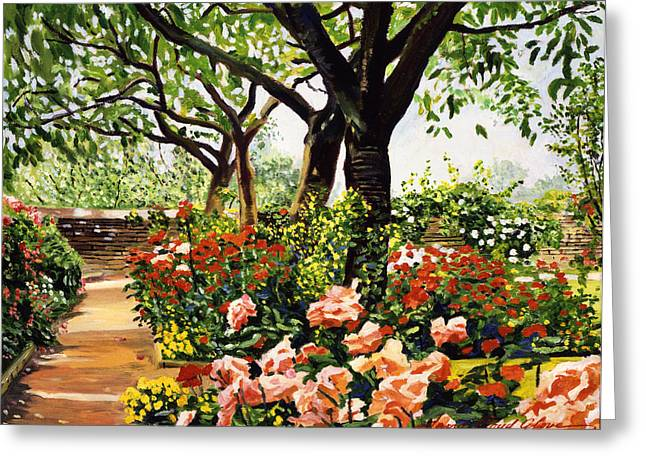 Rose Bushes Greeting Cards - Rose Garden Impressions Greeting Card by David Lloyd Glover