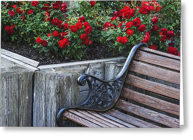 Sit-ins Greeting Cards - Rose Garden Greeting Card by Vishwanath Bhat