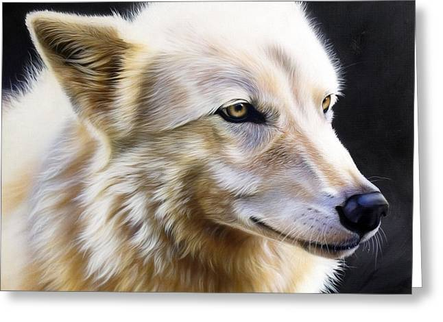 Wolf Song Studio Greeting Cards - Rose II Greeting Card by Sandi Baker