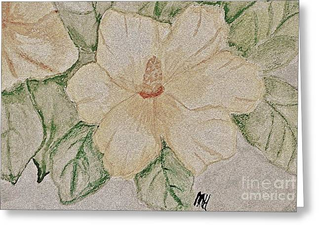 Rose Of Sharon Greeting Cards - Rose of Sharon Painting Greeting Card by Marsha Heiken