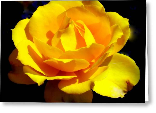 Saloons Greeting Cards - ROSE of SUN Greeting Card by Karen Wiles