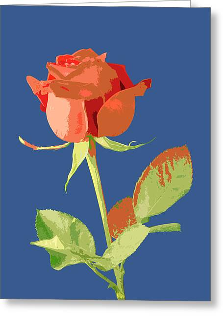 Petals Greeting Cards Pyrography Greeting Cards - Rose on Blue Greeting Card by Mauro Celotti