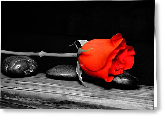 Therapy Greeting Cards - Rose on stones Greeting Card by Toppart Sweden