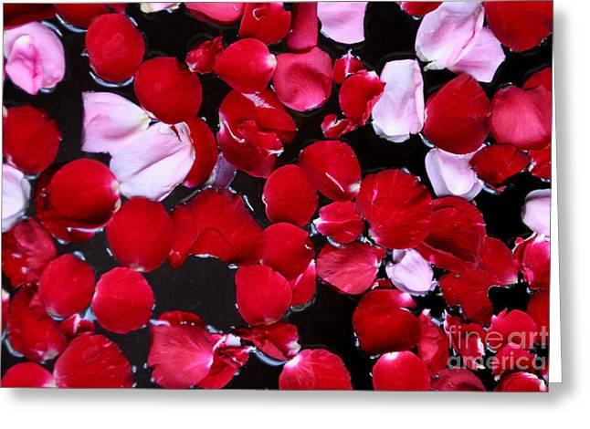 Arie Arik Chen Greeting Cards - Rose Petal on water Greeting Card by Arie Arik Chen
