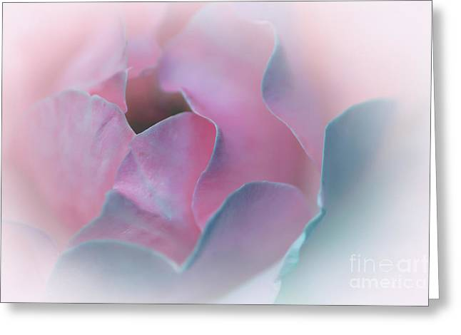 Gentleness Greeting Cards - Rose Petal Pastel by Kaye Menner Greeting Card by Kaye Menner