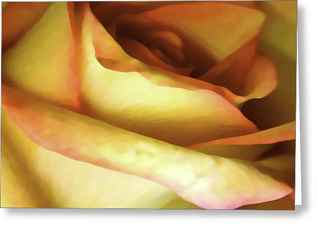 Digital Image Greeting Cards - Rose Scan Softened Greeting Card by Paul Shefferly