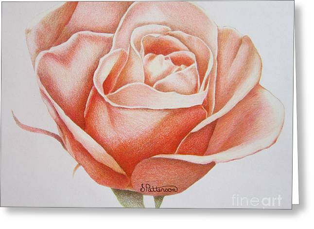 Coloured Greeting Cards - Rose Greeting Card by Sharon Patterson