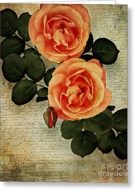 St Elizabeth Digital Greeting Cards - Rose Tinted Memories Greeting Card by Edmund Nagele