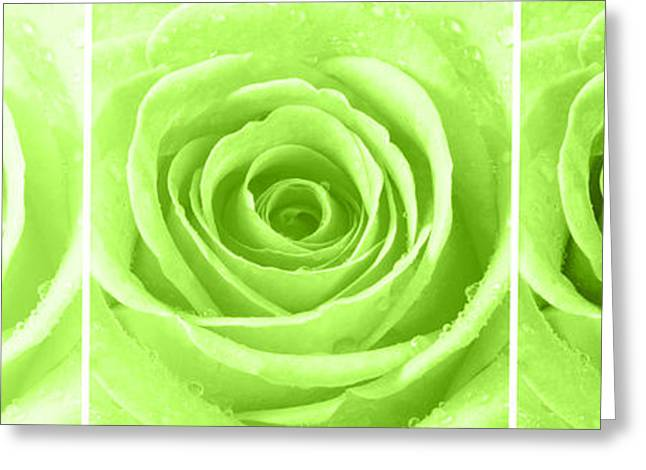 Bathroom Prints Greeting Cards - Rose Trio - Lime Green Greeting Card by Natalie Kinnear