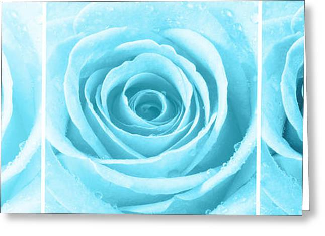Bedroom Art Greeting Cards - Rose Trio - Turquoise Greeting Card by Natalie Kinnear